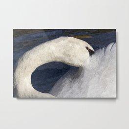 The Shy Swan Art Metal Print