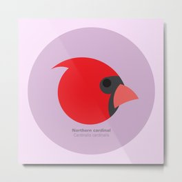 Northern cardinal Metal Print