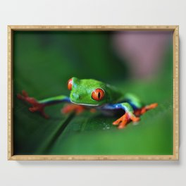 Little Tree Frog (Color) Serving Tray