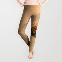 Painted Dragonfly Isolated Against Ecru Leggings