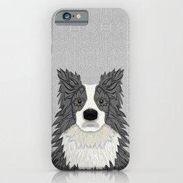 Border Collie - blue merle iPhone Case