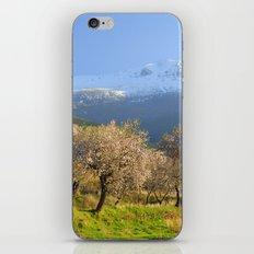 Flowering Almond. San Juan iPhone & iPod Skin
