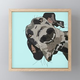 Great Dane in your face (teal) Framed Mini Art Print
