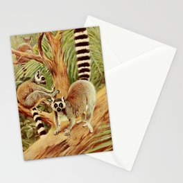 Kuhnert, Friedrich Wilhelm (1865-1926) - Wild Life of the World 1916 v.3 (Ring-tailed Lemur) Stationery Cards