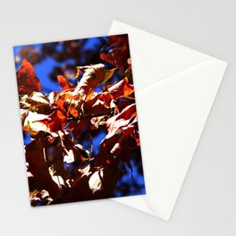 Crisp Fall Leaves Stationery Cards