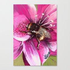 Bee on flower 13 Canvas Print