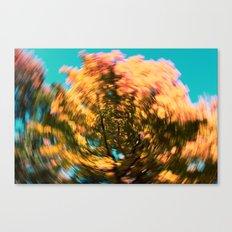 golden swirl Canvas Print