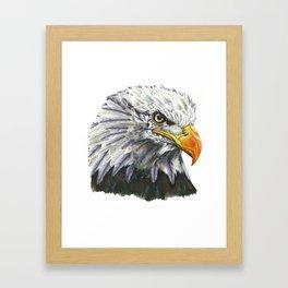 Bald Eagle! Framed Art Print