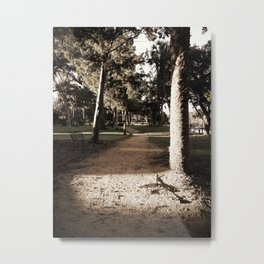 Hidden Path Metal Print
