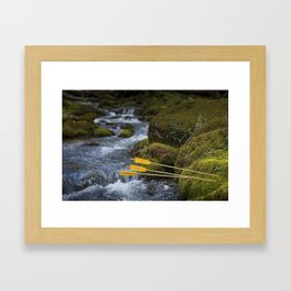 Wild arrows - 2 Framed Art Print