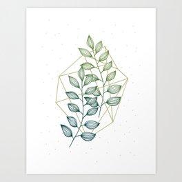 Geometry and Nature III Art Print