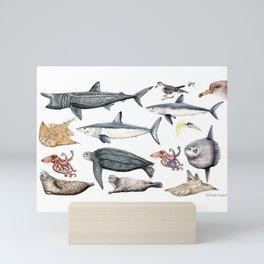 Marine wildlife Mini Art Print