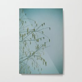 Chantilly Lace Metal Print