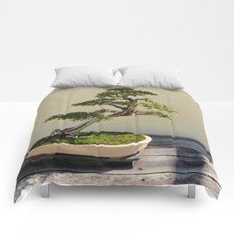 Bonsai Bonanza Comforters