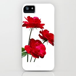 Roses are red, really red! iPhone Case