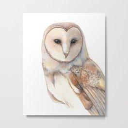Magical Barn Owl Metal Print