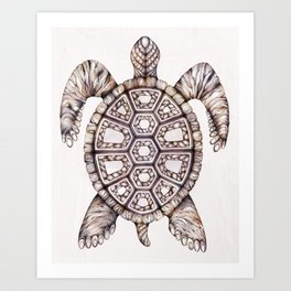 Harold the Turtle II Art Print