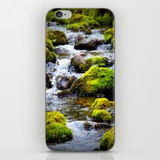 For the Love of Moss iPhone & iPod Skin