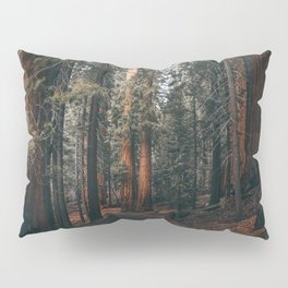 Walking Sequoia Pillow Sham