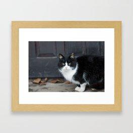Black and white cheating Framed Art Print