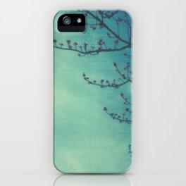 Blue Skies iPhone Case