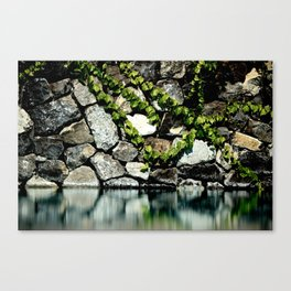 Reflection Rock Canvas Print