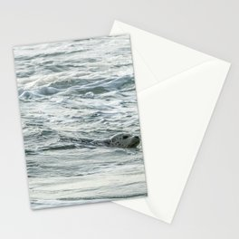 Harbor Seal, No. 2 Stationery Cards