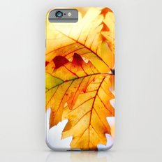 AUTUMN 6 iPhone 6s Slim Case