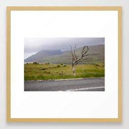 Dried Tree Framed Art Print