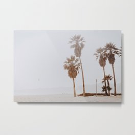palm trees vi Metal Print