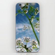 Herb iPhone & iPod Skin