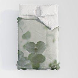 EUCALYPTUS GREEN 2 Comforters