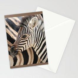 Zebra mother with Baby - wildlife Stationery Cards