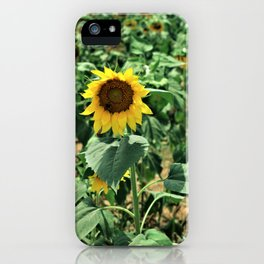 Flower No 6 iPhone Case