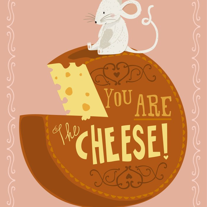 You are the Cheese! Comforters