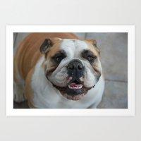 english bulldog Art Prints featuring English bulldog by lyndseylou