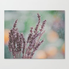 Lavender by the window Canvas Print