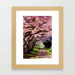 trees and blossoms Framed Art Print