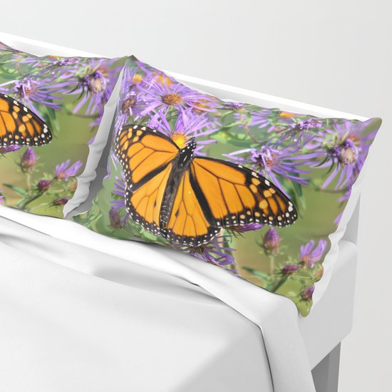 Monarch Butterfly on Wild Aster Flowers by nancyacarter