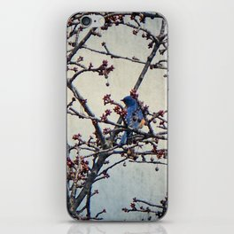 the bluebird and the cherry tree iPhone Skin