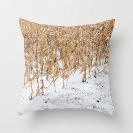 Corn Field 9 Throw Pillow