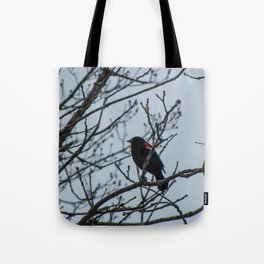 Reflective Red-Wing Blackbird Tote Bag