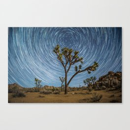 Joshua Tree Star Trail Canvas Print