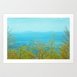 Deciduous beech forest view in spring, mountain landscape Art Print