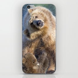 Marvelous Brown Bear Mother With Two Cute Little Cubs Shaking Off Water Ultra HD iPhone Skin