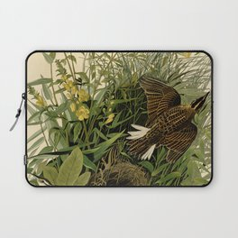 Meadow Lark (Sturnella magna) Laptop Sleeve