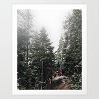 Meet Me In The Woods Art Print