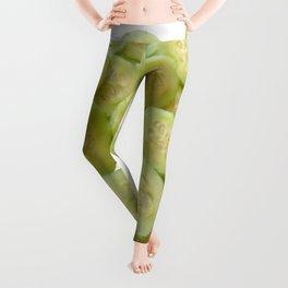 Cucumber Quarters Leggings