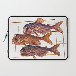 Sardine - fish Laptop Sleeve