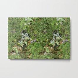 Moss Photograph Metal Print